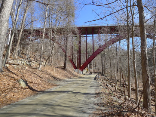 under 9D bridge