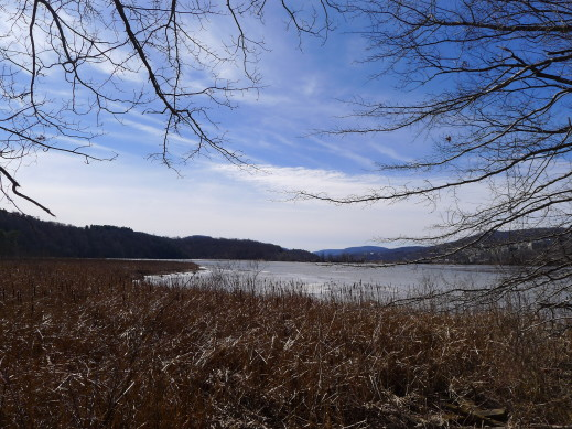 view along trail1