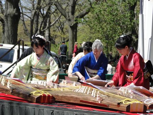 sawai koto academy